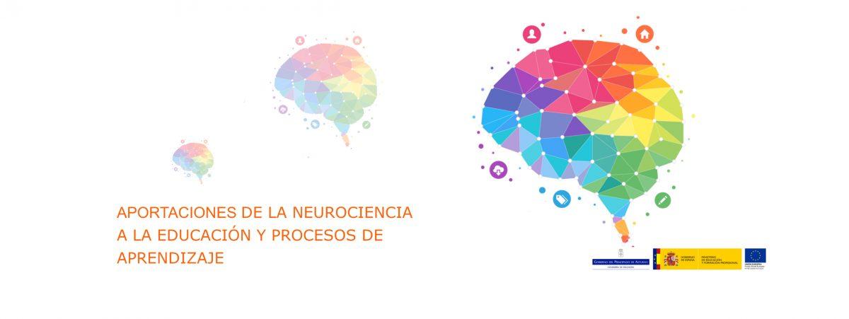 Curso neurociencia